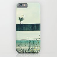 iPhone & iPod Case featuring Sea gull by Hilary Upton