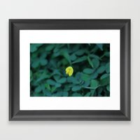 Yellow On Green Framed Art Print
