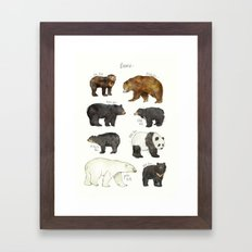 Bears Framed Art Print