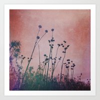 Through Rose Colored Gla… Art Print