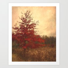 Red Oak Art Print