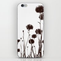 FLOWER 030 iPhone & iPod Skin