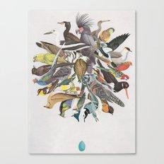 Family of Birds 3 Canvas Print