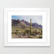 Arizona Cactus Framed Art Print