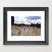 Field Of Joy Framed Art Print