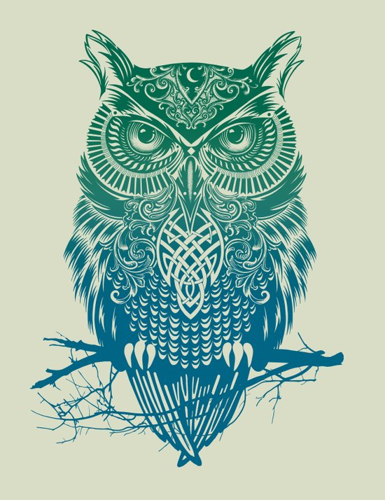 Warrior Owl Art Print