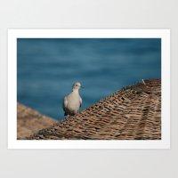 Dove On A Woven Sun Para… Art Print