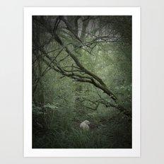 Silas Art Print