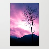 Into The Pink & Purple S… Canvas Print