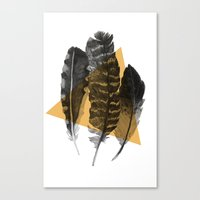 feathers 2 Canvas Print