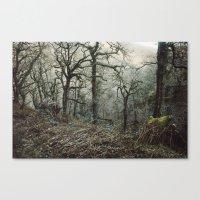 Undergrowth Canvas Print