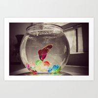 Swim In Color Art Print