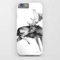 Fallow Deer Stag iPhone 6 Slim Case