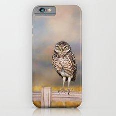 Burrowing Owl Slim Case iPhone 6s