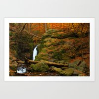 Autumn Scene Art Print