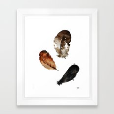 WATERCOLOUR FEATHERS(white bg) Framed Art Print
