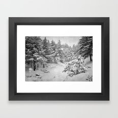 Snowing at the forest Framed Art Print