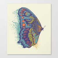 Butterfly Life Cycle Canvas Print