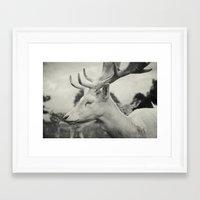 Last King (Ultimate) Framed Art Print
