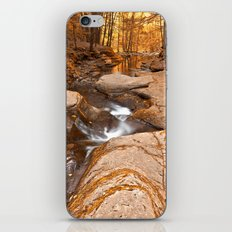 Worlds End Forest Stream - Gold Rapture iPhone & iPod Skin