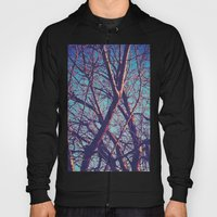 Blue Tree Hoody