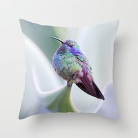 Hummingbird on Aloe Throw Pillow