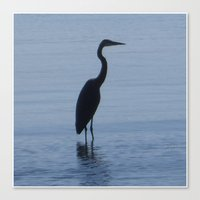 The Blue Heron Canvas Print