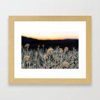 Sagebrush Framed Art Print
