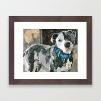 Rocco The Great Framed Art Print