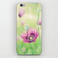 Poppy love iPhone & iPod Skin