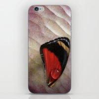Wing Drop iPhone & iPod Skin