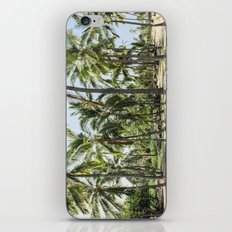 Loads of palm trees iPhone & iPod Skin