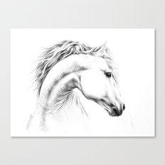 Horse Canvas Print