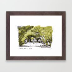 Reserva Ecologica en Buenos Aires Framed Art Print