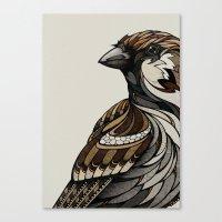 Berlin Sparrow Canvas Print