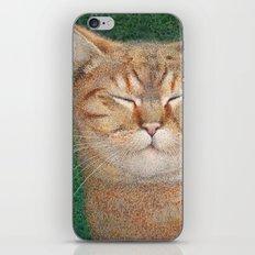 Sleepy iPhone & iPod Skin