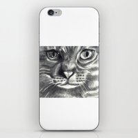Howie (cat) iPhone & iPod Skin