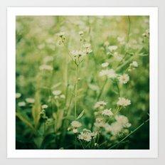 Dreams of Summer Flowers Art Print