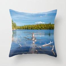 Smoke Lake Throw Pillow