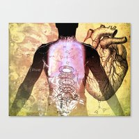 Daniel's Chest Canvas Print