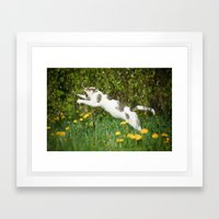 Cat, bumble-bee and dandelions Framed Art Print