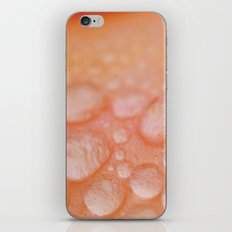 Goosebumps iPhone & iPod Skin