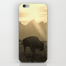 History on Hooves iPhone & iPod Skin