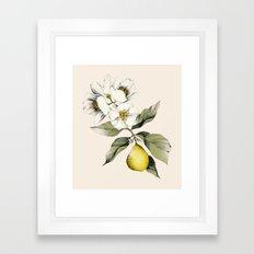 Jasmin & Bergamot Framed Art Print