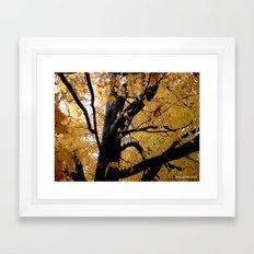 October branches Framed Art Print