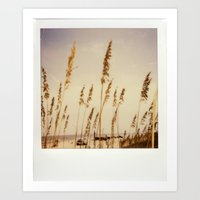Beach Grass - Polaroid Art Print