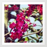 Japanses Flowers Art Print