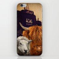 Sheep Cow 123 iPhone & iPod Skin