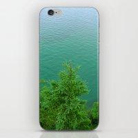 MILELE iPhone & iPod Skin