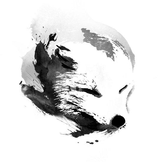 White Fox Canvas Print
